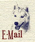 E-Mail